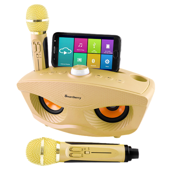 Smartberry S30 Bluetooth Speaker with Family KTV Karaoke & USB & TF Card Support, Gold
