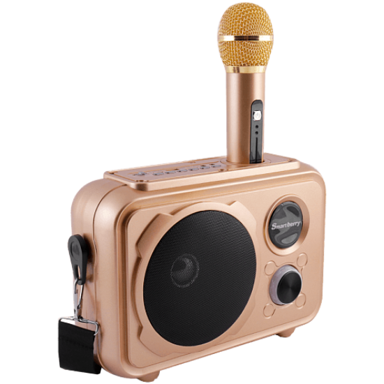 Smartberry S31 Portable Outdoor Karaoke Wireless Bluetooth Speaker with Microphone Included Support FM, TF Micro SD & USB Flash, Gold