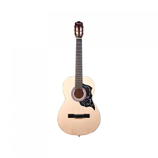 Tansen Acoustic Guitar with Steel Strings MAG93D